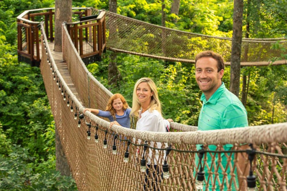 Treetop Skybridge (5)