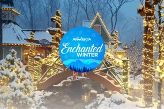 enchanted slide homepage-01-02