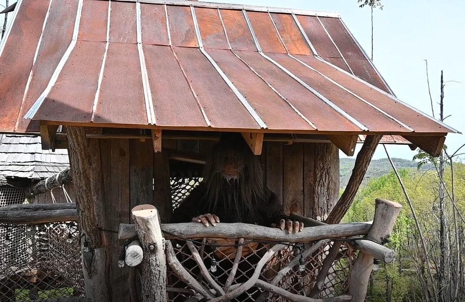 squatch treehouse